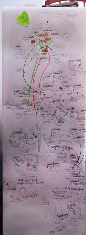Biochemie01