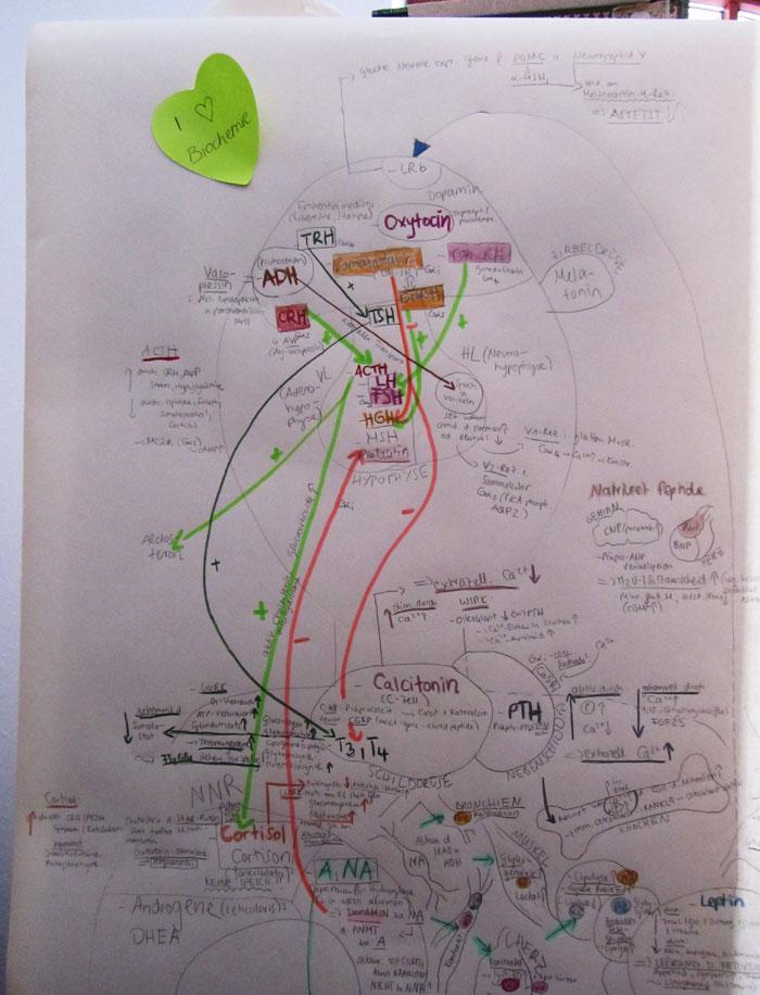 Biochemie02