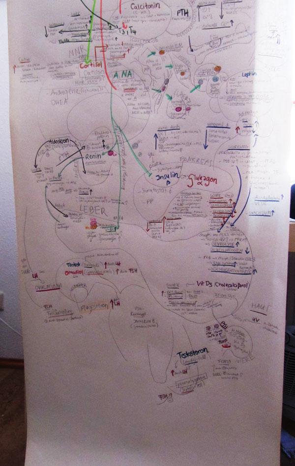 Biochemie03